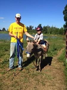 This was Radar our Donkey, but he has already moved on to another family!