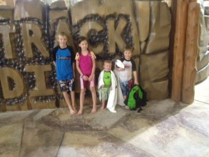 The kids loved the waterpark at Great Wolf Lodge